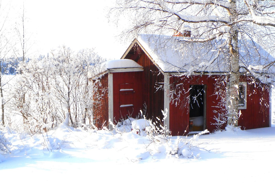 A sauna in every snowstorm